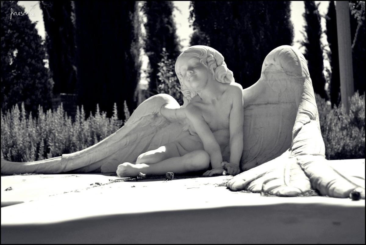 Elegía a mí mismo o el canto del hijo del sepulturero, de Alberto Alejandro Alonso Guerrero.